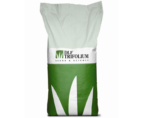 Семена газонной травосмеси Плейграунд (Рlayground)