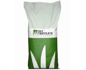 Семена газонной травосмеси Road (Роад)